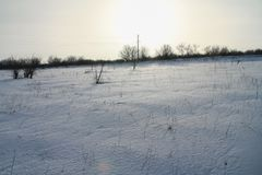 Snow-covered Taurian-steppe Royalty-vrije Stock Fotografie
