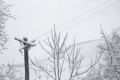 Snow Covered Telegraph Pole Royalty Free Stock Photography