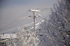 Snow covered Telephone poles Maine Stock Images