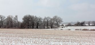 Snow Covered Tennessee Plains Stock Photo