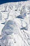 Snow Covered Terrain. An image of well traveled snow covered terrain at a mountain ski resort in Canada Stock Image