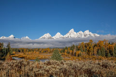 Snow Covered Tetons in Fall Stock Images