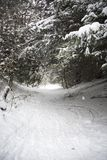 Snow covered track Stock Images