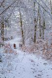 Snow covered forest trail with a wooden footbridge l stock photography