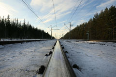 Snow Covered Train Tracks Between Trees at Daytime Royalty Free Stock Photo