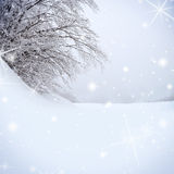 Snow covered tree Stock Photo