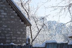 Snow covered tree branches above the snowy roof royalty free stock photography