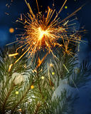 Snow covered tree and sparkler Royalty Free Stock Image