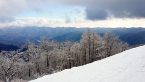Snow covered trees against distant mountain range & storm clouds. From one snow covered mountain slope, looking to a mountain range in the distance.  Beautiful Stock Photo