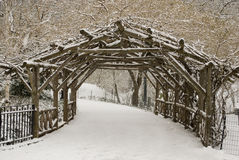 Free Snow Covered Trees And Lawn In Central Park Stock Photos - 12777263