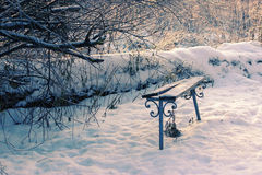 Snow-covered trees and benches in the city park Stock Photography