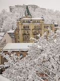 Snow covered trees and buildings Royalty Free Stock Images