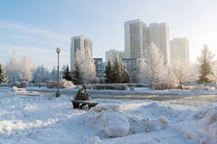 Snow-covered trees in the city of Moscow, Russia Stock Image