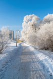 Snow-covered trees in the city of Moscow, Russia Royalty Free Stock Photo
