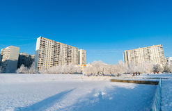Snow-covered trees in the city of Moscow, Russia Stock Photography