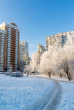 Snow-covered trees in the city of Moscow, Russia Royalty Free Stock Photos