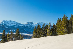 Snow covered trees and German Alps Royalty Free Stock Photos