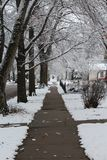 Snow covered trees overhang freshly cleared sidewalk. Snow covered trees overhang a freshly cleared sidewalk after a winter storm royalty free stock photography
