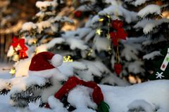 Snow-covered trees in the park, decorated with Christmas toys.  stock image