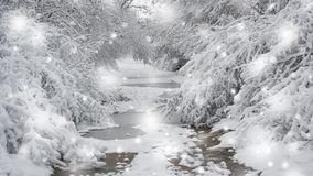 Snow-covered trees plants forest in winter filter, effect. Natural winter Christmas New Year background. Woodland snow under. Cinemagraph seamless loop stock footage