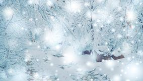 Snow-covered trees plants forest in winter filter, effect. Natural winter Christmas New Year background. Woodland snow under. Cinemagraph seamless loop stock video