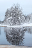 Snow-covered trees reflection in lake water at winter Stock Photos