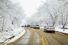 Snow-covered trees and road in Winter. UIWANG, KOREA - February 28, 2016 : Snow-covered trees and road in Winter Stock Images