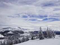 Snow covered trees in the rockies. Snow covered trees in the Colorado Rockies.  Blue ski with interesting clouds stock image