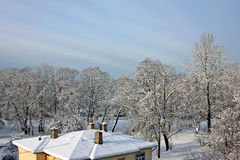 Snow-covered trees and roof of the house Stock Images