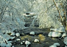 Snow covered trees and Winter forest with flowing Brook in Bridgton, Maine Dec. 2014 by Eric L. Johnson Photography Stock Photo