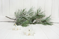 Snow covered twig and candles Stock Images