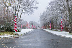 Snow-covered Veteran Cemetery. With Flags Stock Image