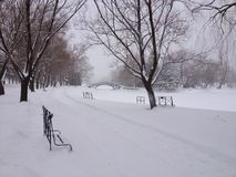 A snow-covered view of the river in Stratford, Ontario. Royalty Free Stock Photos