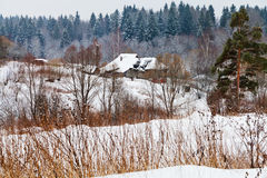 Snow covered village. View of snow village on margin of a spruce forest on a winter day Stock Image