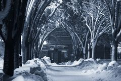 Snow-covered voetpad Royalty-vrije Stock Foto's
