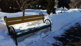 Snow covered walkway of park. Winter snow-covered path in the park. Benches in the snow trees in the snow, snow shimmers in the sun stock video footage
