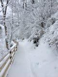 Snow-Covered Wandeling in St Johann Pongau, Oostenrijk Royalty-vrije Stock Afbeeldingen