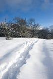 Snow-covered weg Royalty-vrije Stock Foto's