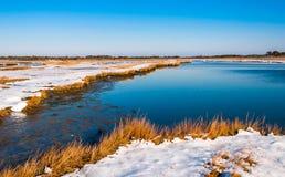 Snow covered wetland at Assateague Island National Seashore, Mar Royalty Free Stock Photo