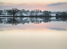 Snow covered Winter countryside sunrise landscape reflected in s Royalty Free Stock Photo