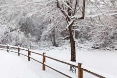 Snow Covered Winter Landscape Stock Photography