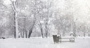 Snow-covered winter park and benches. Park and pier for feeding Royalty Free Stock Photography