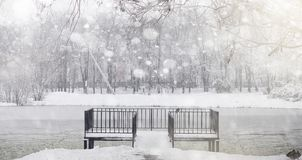 Snow-covered winter park and benches. Park and pier for feeding Royalty Free Stock Photo