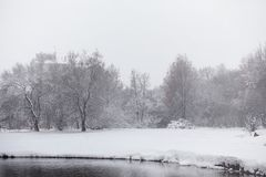 Snow-covered winter park and benches. Park and pier for feeding. Ducks and pigeons. The snow covered the autumn park.r Stock Photography