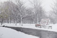 Snow-covered winter park and benches. Park and pier for feeding. Ducks and pigeons. The snow covered the autumn park.r Royalty Free Stock Photo