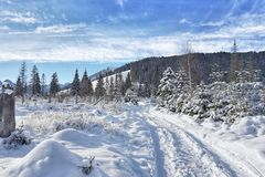 Snow-covered winter road in mountain valleys stock image