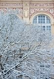 Snow covered winter tree with ornate mansion wall Royalty Free Stock Photography