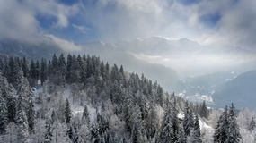 Snow covered winter trees in the foreground frame a perfect winter scene as a snowy alpine mountain tops. Peak through the clouds and mist in the background royalty free stock photography