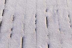 Snow covered wood terrace Royalty Free Stock Image