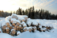 Snow Covered Wooden Logs. A stack of wooden logs in winter, with edge of forest and sky on the background. Photographed in Salo, January Finland 2012 stock image